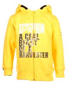 Kid's hoodie